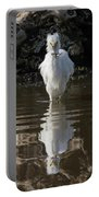 Egret Catches A Stickleback Portable Battery Charger