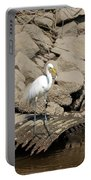 Egret Fishing Portable Battery Charger