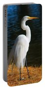 American Egret Portable Battery Charger
