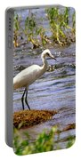 Egret On A Rock Portable Battery Charger
