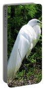 Egret On Guard Portable Battery Charger