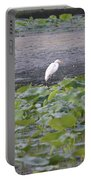 Egret Standing In Lake Portable Battery Charger