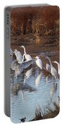 Egrets Gathering For Fishing Contest. Portable Battery Charger