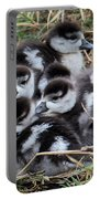 Egyptian Goose Alopochen Aegyptiacus Portable Battery Charger