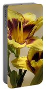 El Bandito Daylilies - Yellow  Portable Battery Charger