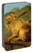 El Paso Zoo - Golden Lion Tamarin Portable Battery Charger