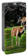Eland Portable Battery Charger