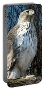 Elder Hawk Portable Battery Charger