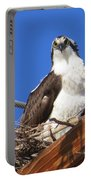 Electric Blue Osprey Portable Battery Charger
