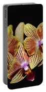 Elegant Orchid On Black Portable Battery Charger