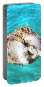Element Sea Portable Battery Charger