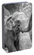 Elephant And Tree Trunk Black And White Portable Battery Charger