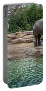 Elephant And Waterfall Portable Battery Charger