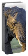 Elephant Close Up Portable Battery Charger