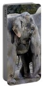 Elephant Family Portable Battery Charger