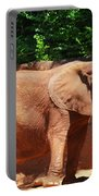 Elephant In Red Clay Portable Battery Charger
