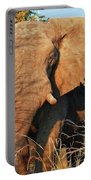Elephant On Approach Portable Battery Charger