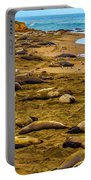 Elephant Seals Near Cambria  Portable Battery Charger