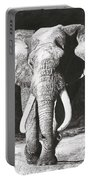 Elephant Portable Battery Charger