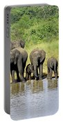 Elephants At The Waterhole   Portable Battery Charger