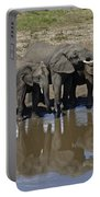 Elephants In The Mirror Portable Battery Charger