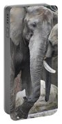Elephants Playing 2 Portable Battery Charger