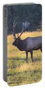 Elk At Sunset Portable Battery Charger