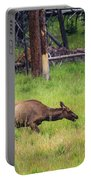 Elk In The Field Portable Battery Charger