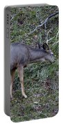 Elk With Antlers Portable Battery Charger