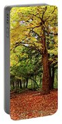 Elora Gorge Campsite In Fall Portable Battery Charger