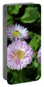 English Daisies Portable Battery Charger