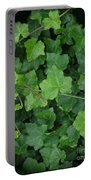 English Ivy Portable Battery Charger