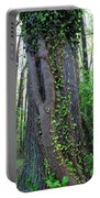 English Ivy Elder Portable Battery Charger