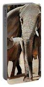 Elephant Walk Portable Battery Charger
