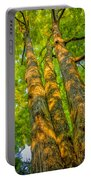 Enlightened Trees Portable Battery Charger