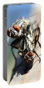 Entomologists Discover Why People Want To Be A Fly On The Wall Portable Battery Charger