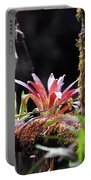 Epiphytic Plants Portable Battery Charger