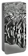 Etosha Pan Reflections Portable Battery Charger