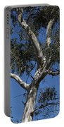Eucalyptus Portable Battery Charger