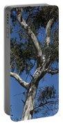 Eucalyptus Portable Battery Charger