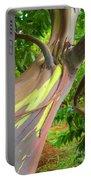 Eucalyptus Tree Portable Battery Charger