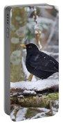Eurasian Blackbird In The Snow Portable Battery Charger
