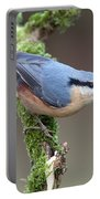 European Nuthatch Portable Battery Charger