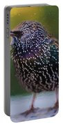 European Starling - Painted Portable Battery Charger