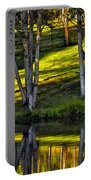 Evening Birches Portable Battery Charger