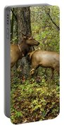 Evening Forage Portable Battery Charger