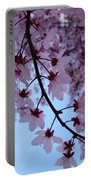 Evening Sky Pink Blossoms Art Prints Canvas Spring Baslee Troutman Portable Battery Charger