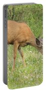 Evening Visitor Portable Battery Charger