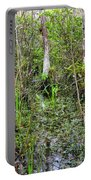 Everglades Swamp Two Portable Battery Charger