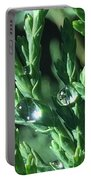 Evergreen Dew Portable Battery Charger